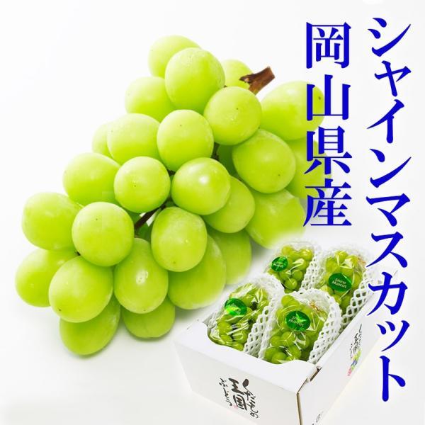 岡山県産 シャインマスカット 晴王 優品3〜5房2kg 家庭用 葡萄 ブドウ フルーツ