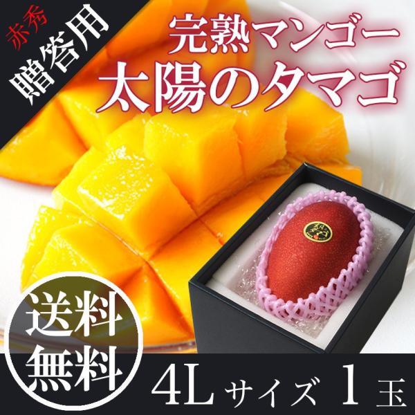 太陽のタマゴ 赤秀 4L1玉 宮崎 完熟 マンゴー JAはまゆう 送料無料 贈答用 母の日 父の日 お中元 フルーツ ギフト