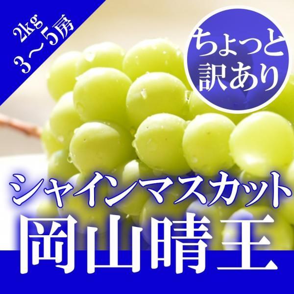 岡山県産 シャインマスカット 晴王 3〜5房 2kg 訳あり 家庭用 ブドウ ぶどう 葡萄