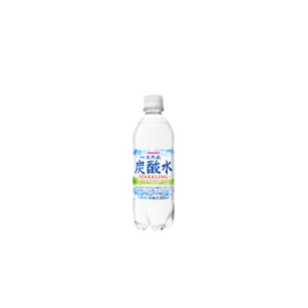 〔まとめ買い〕サンガリア 伊賀の天然水炭酸水 PET 500ml ×24本(1ケース)(同梱・代引不可)