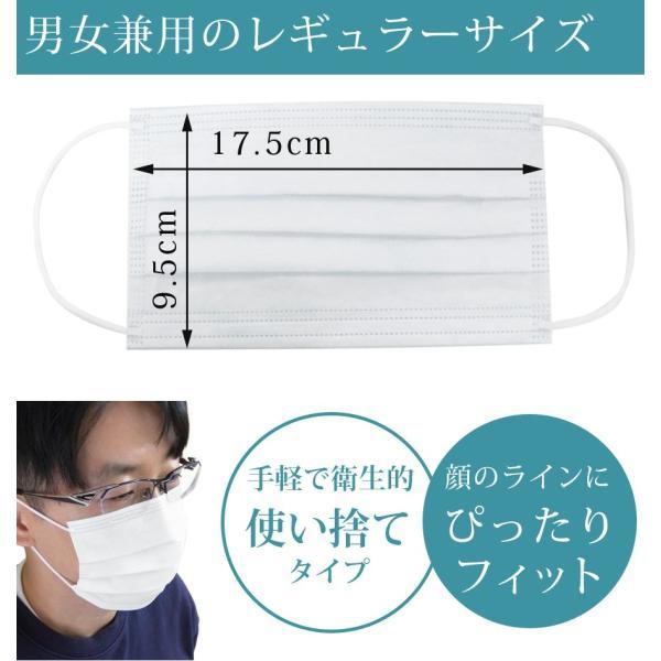 マスク 使い捨て 30枚入 日本国内発送 3層構造 プリーツタイプ 大人用 レギュラーサイズ 男女兼用 三層構造 フェイスマスク 不織布マスク ichibankanshop 02