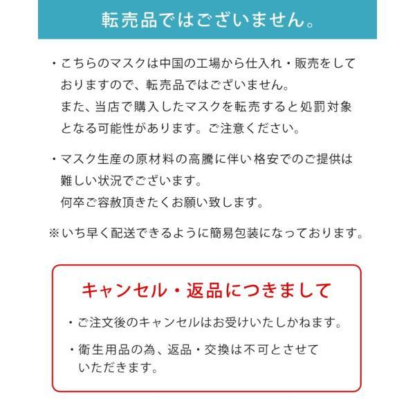 マスク 使い捨て 30枚入 日本国内発送 3層構造 プリーツタイプ 大人用 レギュラーサイズ 男女兼用 三層構造 フェイスマスク 不織布マスク ichibankanshop 07