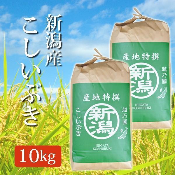 米 令和2年産 2021年度産 玄米 新潟県産こしいぶき コシイブキ 10Kg (10キロ)  5kg×2袋 新潟産 産地特選 代引不可 同梱不可