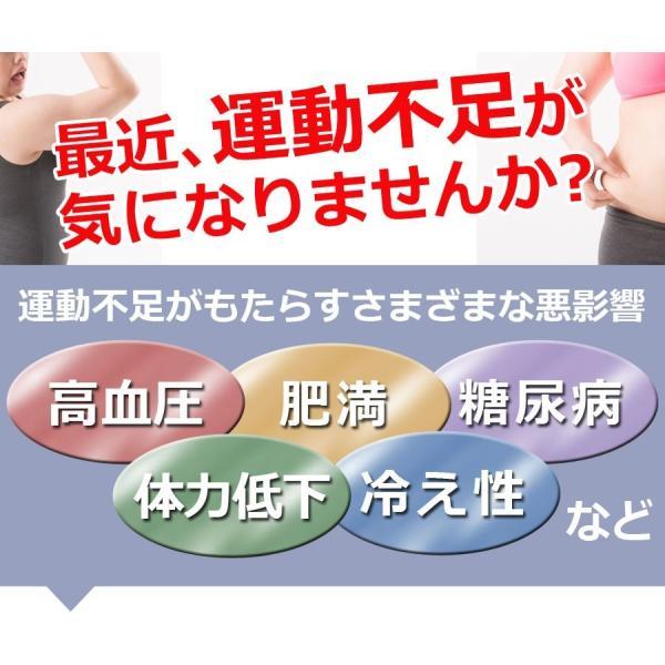腹筋 トレーニング 器具 エクササイズ ダイエット 筋トレ 器具 家庭用 二の腕 ながら運動 スライド式 自宅用 シットアップマシン|ichibankanshop|02