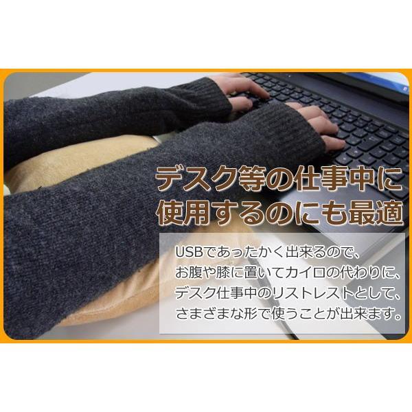 ホットクッション USB温熱クッション SunRuck(サンルック) USBあったかクッション アイボリー 腰当て用 腕用 PC用 カイロとして SR-UCS01|ichibankanshop|03