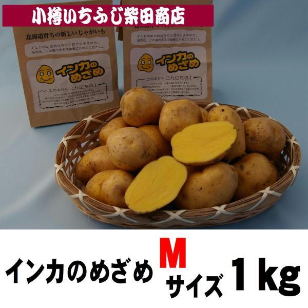P6 1kg袋 インカのめざめ Mサイズ 北海道産|ichifuji-shibata