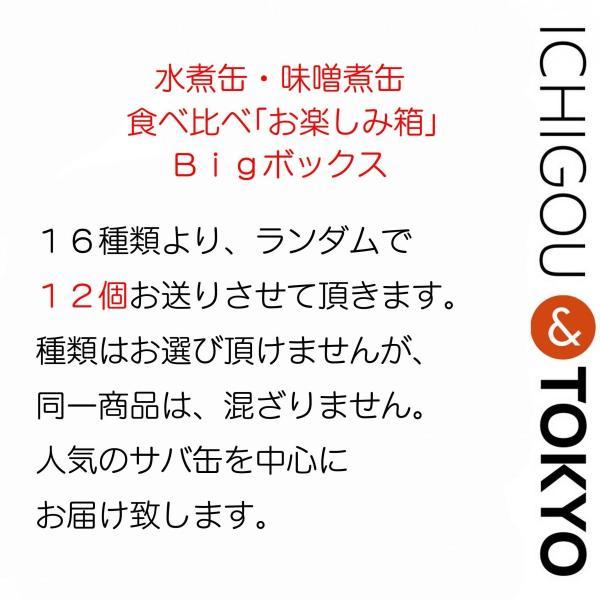 缶詰 食べ比べ お楽しみ箱 BIG ichigou-sake 03