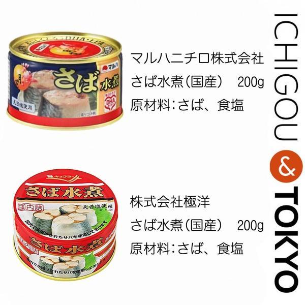 缶詰 食べ比べ お楽しみ箱 BIG ichigou-sake 05