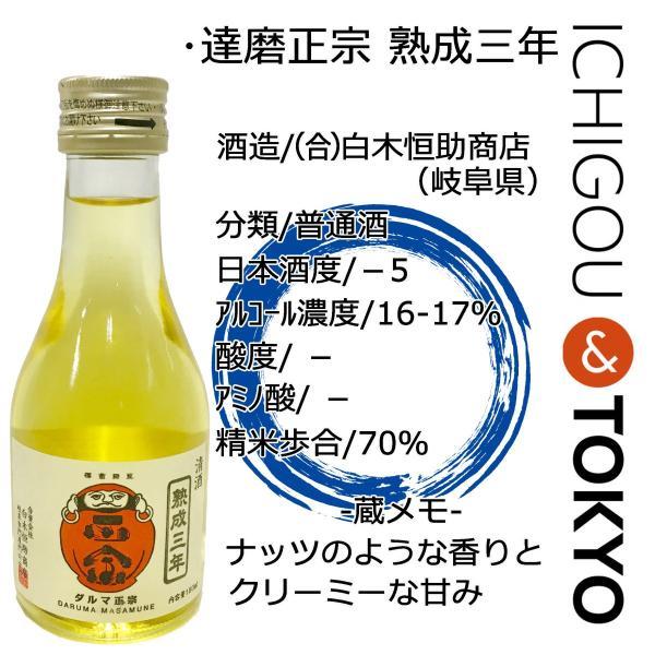 日本酒 普通酒 達磨正宗 熟成三年 180ml ichigou-sake 02