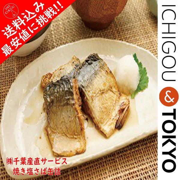 送料込 最安値 鯖缶 いわし缶 6個セット 缶詰 アヒージョ|ichigou-sake|02