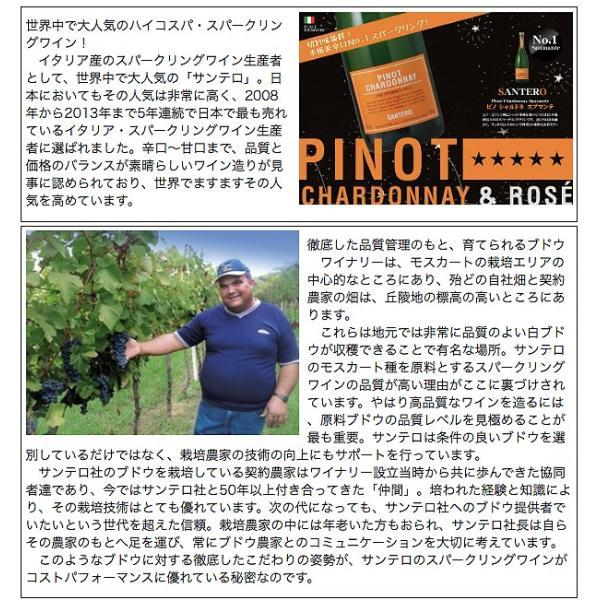 サンテロ ピノ ロゼ 750ml 辛口|ichiishop|02