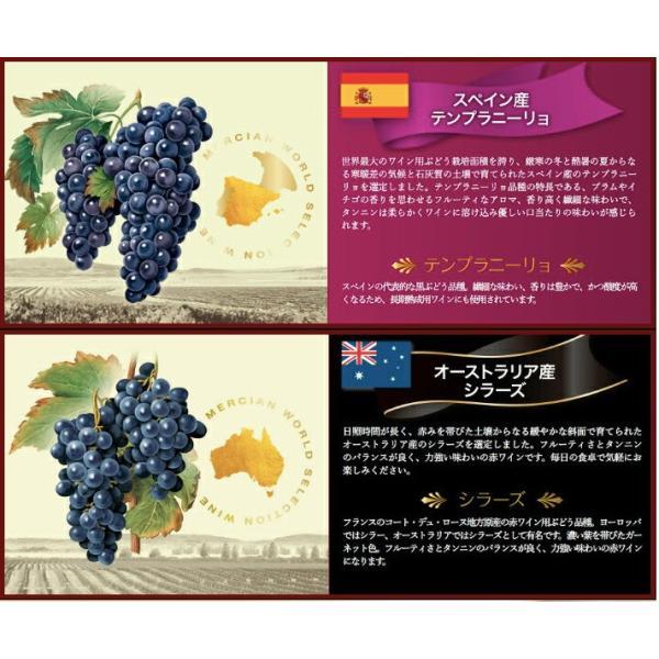 ワイン品種別飲み比べセット 720ml×5本 ワールドセレクション メルシャン WORLD SELECTION ichiishop 03
