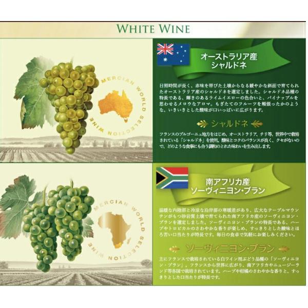 ワイン品種別飲み比べセット 720ml×5本 ワールドセレクション メルシャン WORLD SELECTION ichiishop 04