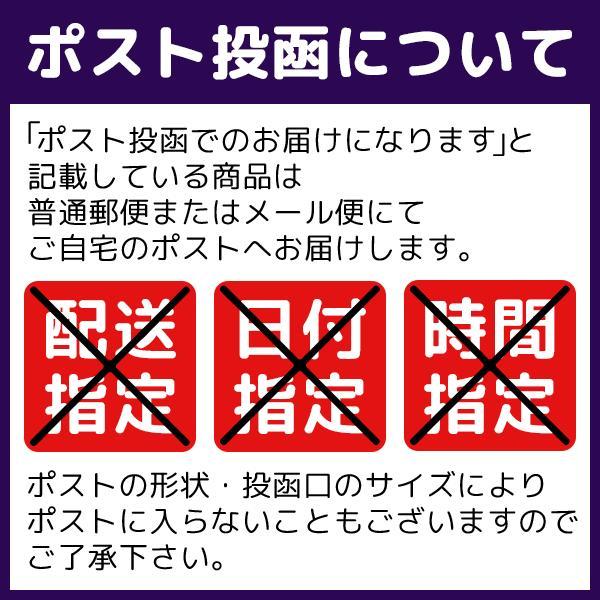 国産 ほうじ茶 ティーバッグ 4袋パック お試し 送料無料 ichijo 02