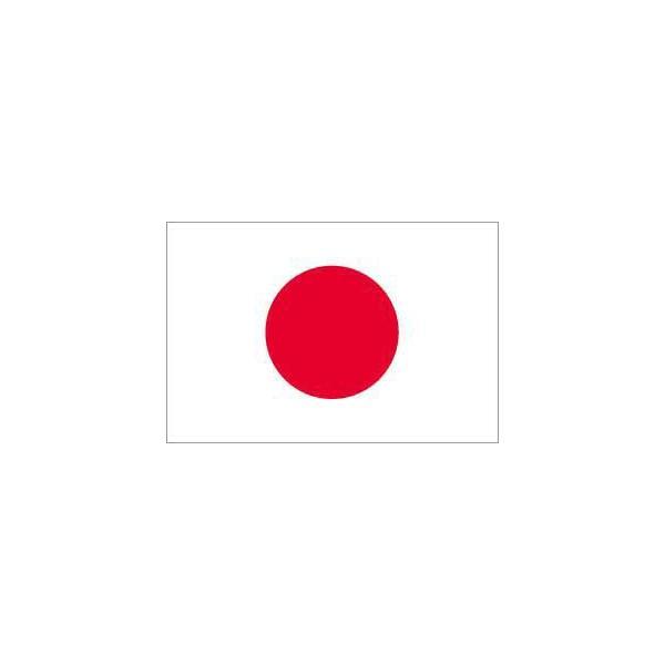 日本国旗_日本国旗日の丸(70x105cm・ブロード):t-140:旗とカップichikawa-sk