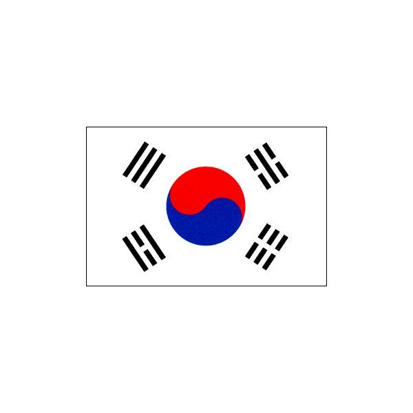 大韓民国国旗(90x135cm・エクスラン) :t-nf-095-90x135:旗とカップ ...