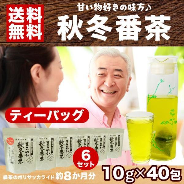 秋冬番茶 ティーバッグ 10g×40包 6本セット ポリサッカライド豊富 静岡茶 掛川茶
