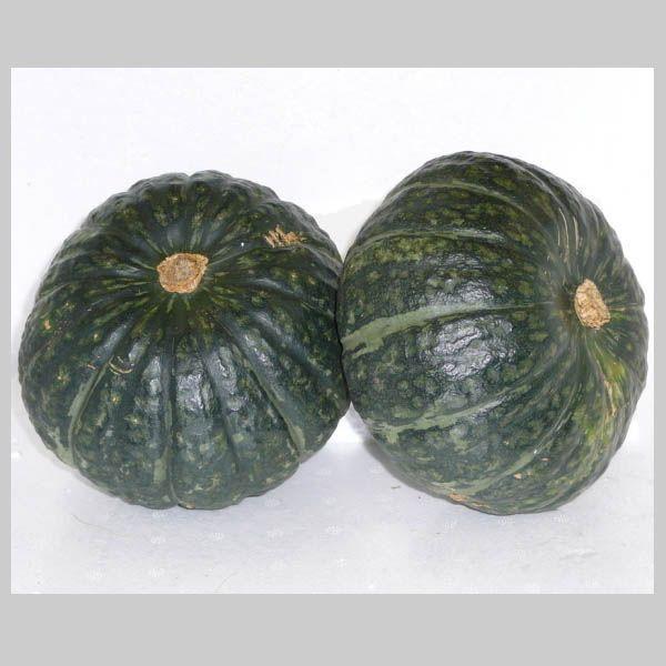 南瓜 かぼちゃ カボチャ 1箱 10kg 送料無料