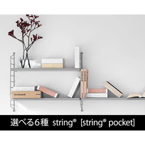 選べる6種 ストリング 「ストリング ポケット」 string [string pocket] (他の商品との同梱不可)|ideale