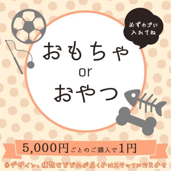 5,000円以上のお買物でおやつorおもちゃor洋服 1点1円 ※カゴに入れてください idog 02