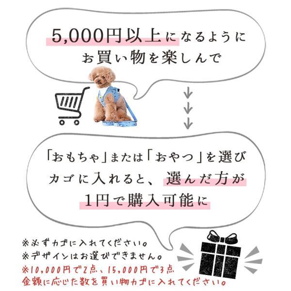5,000円以上のお買物でおやつorおもちゃor洋服 1点1円 ※カゴに入れてください idog 03