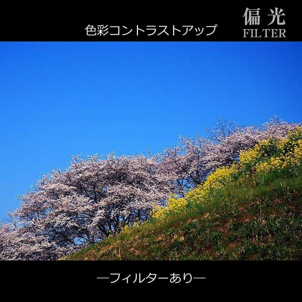 MARUMI カメラ用 フィルター DHGスーパーサーキュラー P.L.D62mm 偏光フィルター 68109