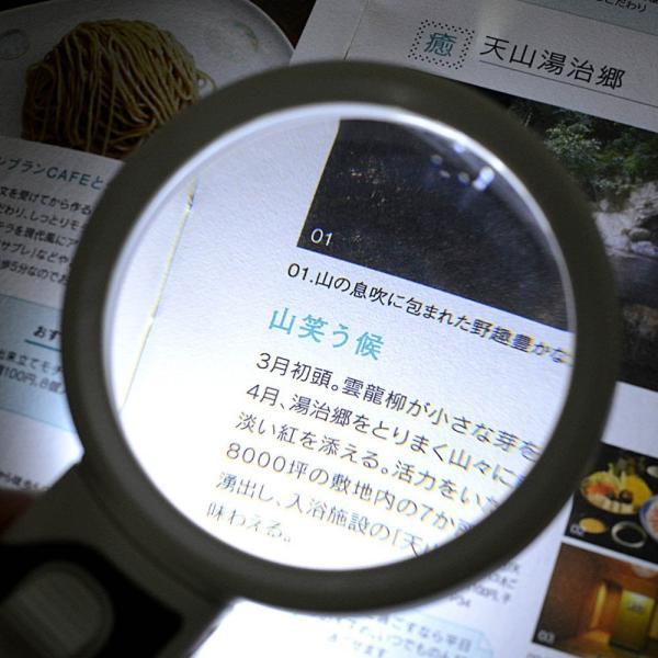手持ちルーペ 拡大鏡 LEDライト ルーペ 読書用 老眼鏡 倍率5倍