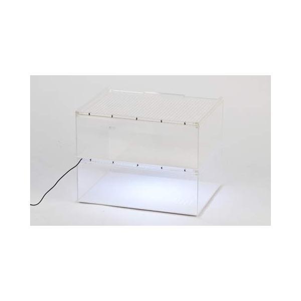 SANKO レプタイルボックス ワイド|idr-store|02