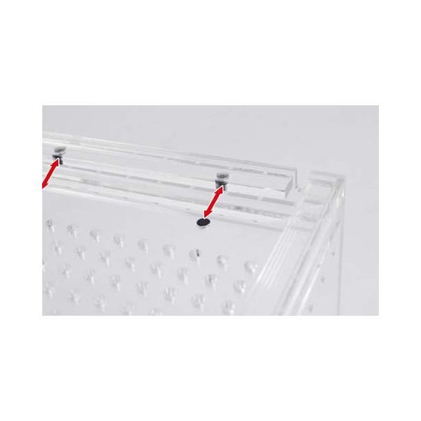 SANKO レプタイルボックス ワイド|idr-store|06