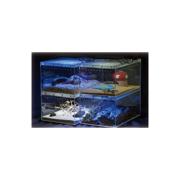 SANKO レプタイルボックス ワイド|idr-store|08