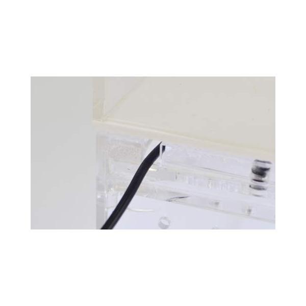 SANKO レプタイルボックス ワイド|idr-store|09