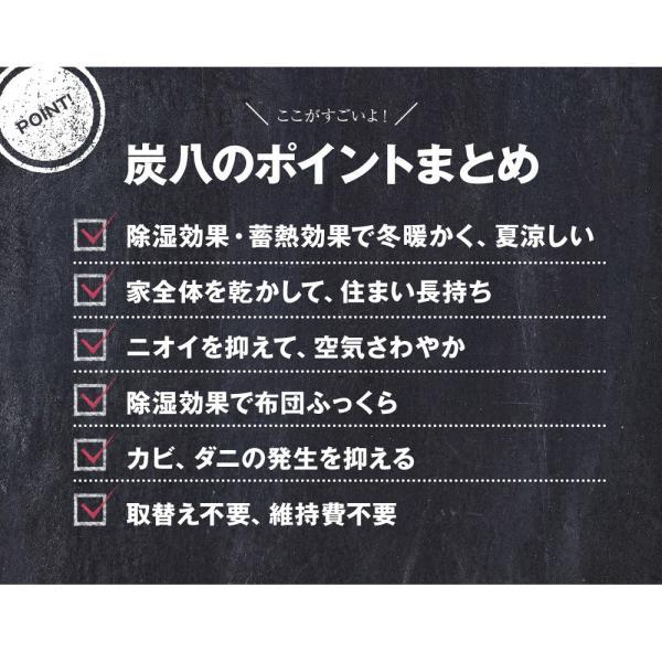 除湿剤 調湿 結露 消臭 炭八 室内用 4点セット 出雲屋|ienolabo|13