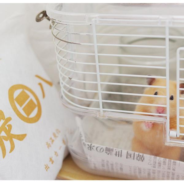 除湿剤 調湿 結露 消臭 炭八 室内用 4点セット 出雲屋|ienolabo|05