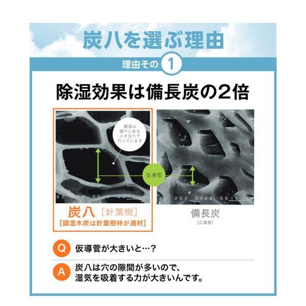 除湿剤 調湿 結露 消臭 炭八 室内用 4点セット 出雲屋|ienolabo|08