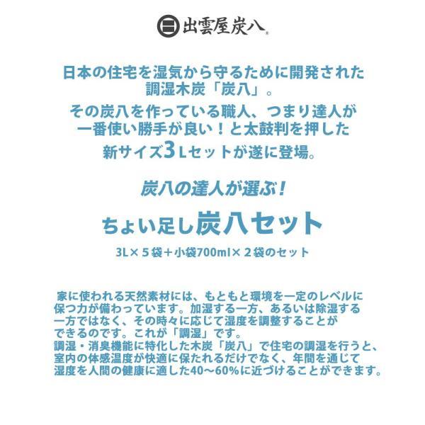 炭八 除湿剤 達人が選ぶ 炭八セット 室内 3L|ienolabo|02