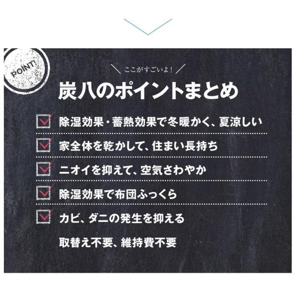 炭八 除湿剤 達人が選ぶ 炭八セット 室内 3L|ienolabo|13