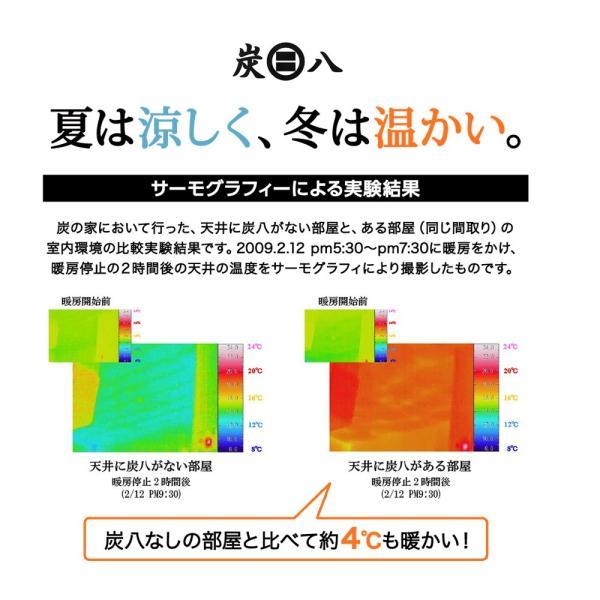 炭八 除湿剤 達人が選ぶ 炭八セット 室内 3L|ienolabo|14