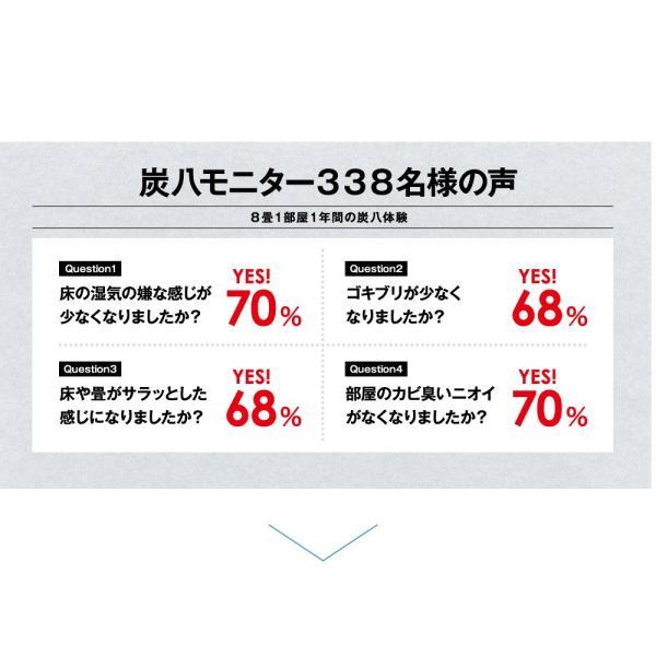 炭八 除湿剤 達人が選ぶ 炭八セット 室内 3L|ienolabo|15