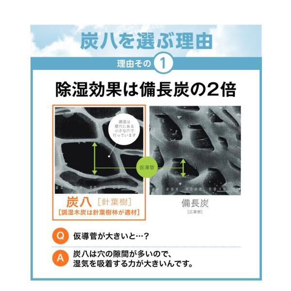 炭八 除湿剤 達人が選ぶ 炭八セット 室内 3L|ienolabo|08