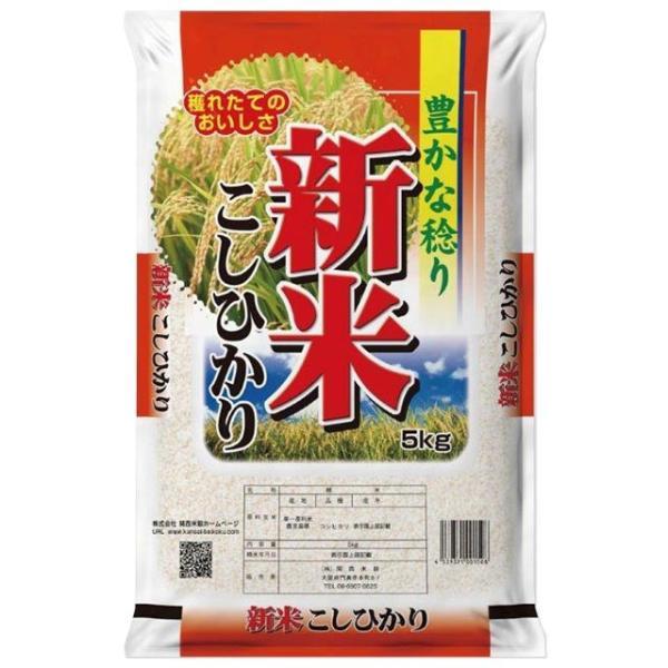 新米 コシヒカリ 5kg 送料無料 鹿児島県 令和3年 産(2021年 白米 5キロ)