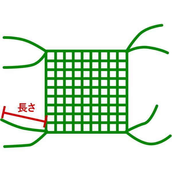 ネットオプション/四隅直線仕上げ 2本出し 30cm igogochi