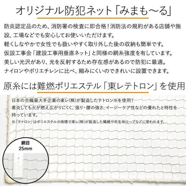 NET31 防犯 盗難防止ネット 巾201〜300cm 丈201〜300cm igogochi 02