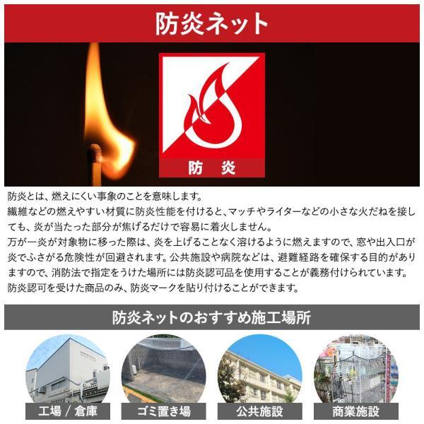 NET31 防犯 盗難防止ネット 巾401〜500cm 丈401〜500cm igogochi 05