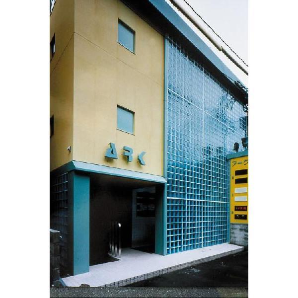 8個セット 送料無料 ガラスブロック 世界で有名なブランド品 厚み95mmタンジェリンgb30095-8p|ihome|05