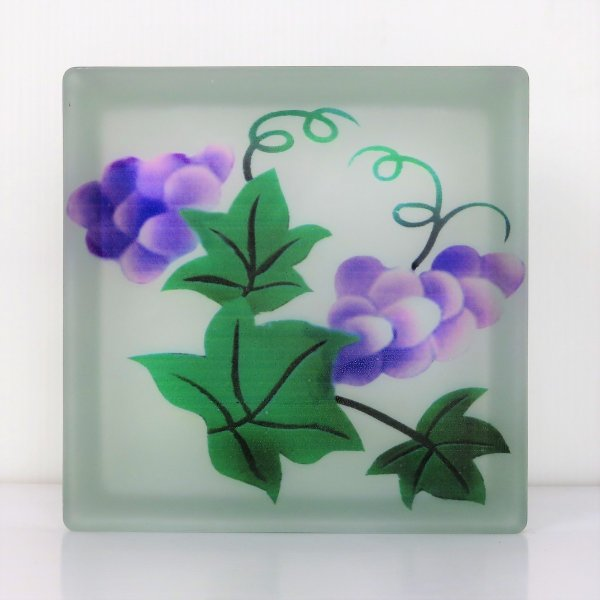 ガラスブロック 日本基準サイズ 世界で有名なブランド品 厚み95mm特殊模様gb7295|ihome
