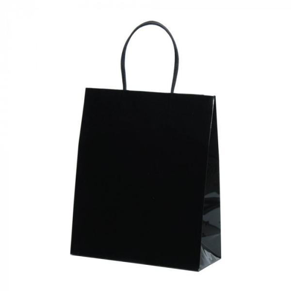 パックタケヤマ 店内限界値引き中&セルフラッピング無料 手提袋 STB プリティ XZT00806 10枚×10包 代引き不可 黒 いつでも送料無料