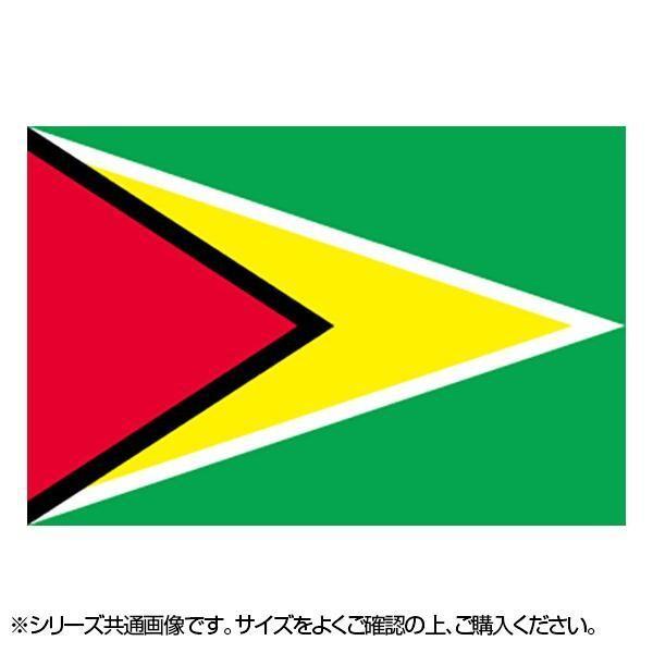 N国旗 ガイアナ No.2 22968 半額 人気の製品 W1350×H900mm