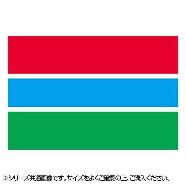 N国旗 ガンビア 美品 No.2 22976 W1350×H900mm お買い得