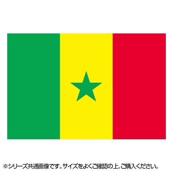 N国旗 セネガル ギフ_包装 大幅にプライスダウン No.2 W1350×H900mm 23156