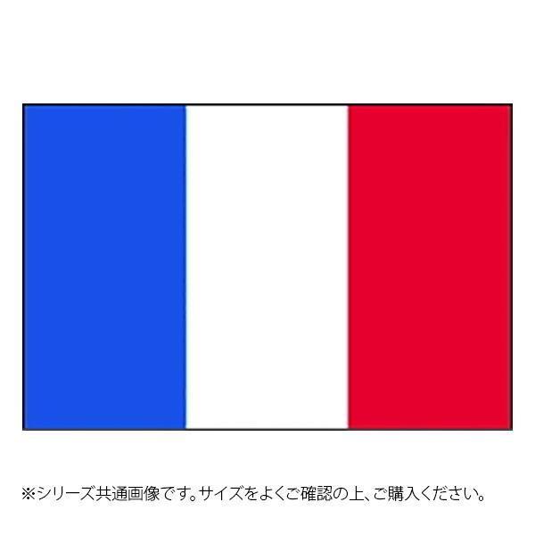 N国旗 定価 フランス トリコロール No.2 W1350×H900mm 23376 限定価格セール